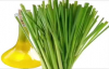 Lemongrass Oil Health Benefits  the Hair,Skin, and Side Effects of Lemongrass Oil