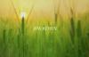 Jim Rohn - Habits To Build A Better You (Personal Development).mp4