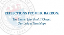 Mundelein Seminary Presents_ Fr. Barron on Our Lady of Guadalupe.flv