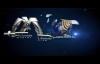 La idolatría y los demonios 1 pte - Armando Alducin.mp4