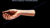 Nerve Injury ,types . Nerve recovery  Everything You Need To Know  Dr. Nabil Ebraheim