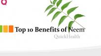 Top 10 Benefits of neem  Neem Benefits  Health
