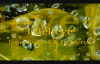 I Believe James Fortune & Fiya lyrics.flv