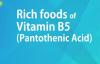 RICH FOODS OF VITAMIN B5 PANTOTHENIC ACID  GOOD FOOD GOOD HEALTH  BENEFITS OF WELLNESS