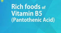 RICH FOODS OF VITAMIN B5 PANTOTHENIC ACID  GOOD FOOD GOOD HEALTH  BENEFITS OF WELLNESS