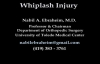 Whiplash Injury Animation  Everything You Need to Know  Dr. Nabil Ebraheim, M.D