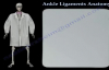 Ankle Ligaments Anatomy  Everything You Need To Know  Dr. Nabil Ebraheim