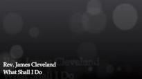 Rev. James Cleveland-What Shall I Do.flv