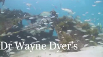 7 - Living Beyond Ego - Dr. Wayne W. Dyer's Change your thoughts, change your life, audio book.mp4