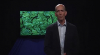Dr. Mercola Discusses the Benefits of Magnesium