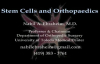 Stem Cells and Bone Healing  Everything You Need to Know  Dr. Nabil Ebraheim