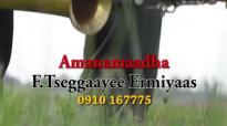 Tsegaye Ermias Oromo Gospel Song 2015- Waqayoo Amanamaadha ( God Is Trust Worthy.mp4