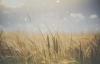 Jim Rohn - Ways to Improve Your Life (Personal Development).mp4