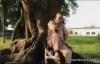 Pitshou Mwanza - 2E REGARD - 2e regard [OFFICIAL].flv