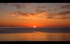 David E. Taylor - THE GREATEST MOVE OF GOD IS ABOUT TO HAPPEN pt.1.mp4
