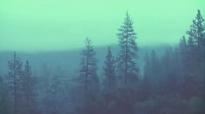 Nearness  Jenn Johnson  We Will Not Be Shaken Official Lyric Video