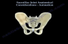Sacroiliac Joint dysfunction ,animation  Everything You Need To Know  Dr. Nabil Ebraheim