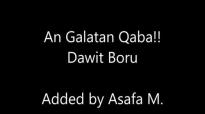 Dawit Boru_ Ani Galatan Qaba.mp4