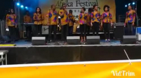 2014 African festival Graz Part 1