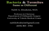 Bacteria infection and Termites  The Same or Different  Dr. Nabil Ebraheim