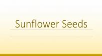 Sunflower Seeds Health Benefits  Health Benefits of Sunflower Seeds  Super Seeds and Nuts