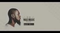 Mali Music Walking Shoes Lyrics 2014.flv