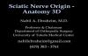 Sciatic Nerve , Anatomy , 3D animation  Everything You Need To Know  Dr. Nabil Ebraheim