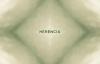 Evan Craft - Herencia (Video Lyric).mp4