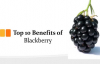 Top 10 Benefits of Blackberry  Blackberry Health Benefits