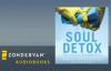 Craig Groeschel - Soul Detox Audiobook Ch. 1.flv