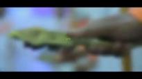 Meron Zerihun ft. Dagi Tilahun New Mezmur 2015.mp4