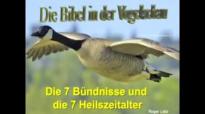 Die Bibel in der Vogelschau - Roger Liebi.flv