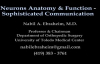 Neuron Anatomy , Function and Communication  Everything You Need To Know  Dr. Nabil Ebraheim