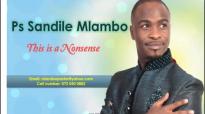 Sandile Mlambo Nonsense part 2.mp4