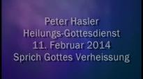 Peter Hasler - Heilungs-Gottesdienst - Sprich Gottes Verheissung - 11.02.2014.flv