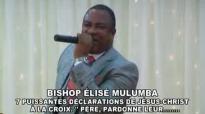 BISHOP ÉLISÉ MULUMBA (1).flv