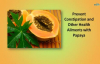 Prevent Constipation and Other Health Ailments with Papaya  Papaya Health Benefits