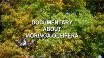 Moringa Oleifera  Documentary about Moringa Superfood