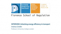 Unlocking energy efficiency in transport _ Andreas Schäfer, University College London (UCL).flv