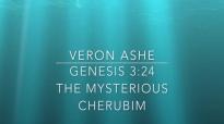 Veron Ashe Preaches on Genesis 3 24 The Mysterious Cherubim.mp4
