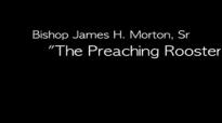 Bishop James Morton  The Preaching Rooster