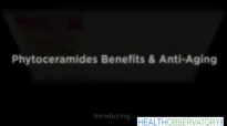 Phytoceramides Benefits Anti Aging  Health Products & Reviews