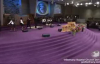Tye Tribbett at Power of God 2014.flv