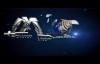 La corrupción del genoma humano 03 - Armando Alducin.mp4