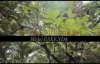SEMBOLA LOBOKO de Henry Papa M feat Michel BAKENDA KIN EXPR 1.flv