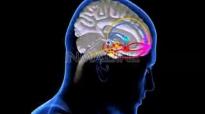 The Mind. Neville Johnson 1