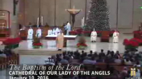 The Baptism of the Lord, Homily by Bishop Robert Barron (Jan 10, 2016).flv