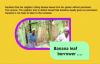 The banana leaf borrower. Kansiime Anne. African comedy.mp4