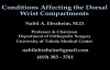 Conditions Affecting Dorsal Wrist Compartments  Everything You Need To Know  Dr. Nabil Ebraheim