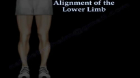 Alignment Of The Lower Limb  Everything You Need To Know  Dr. Nabil Ebraheim